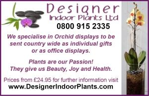 Designer Indoor Plants Ltd Woman & Home Advert created by IAQ Graphic Design
